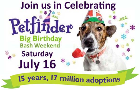 july16adoptionevent.jpg